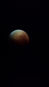 April 15, 2014 03:49am